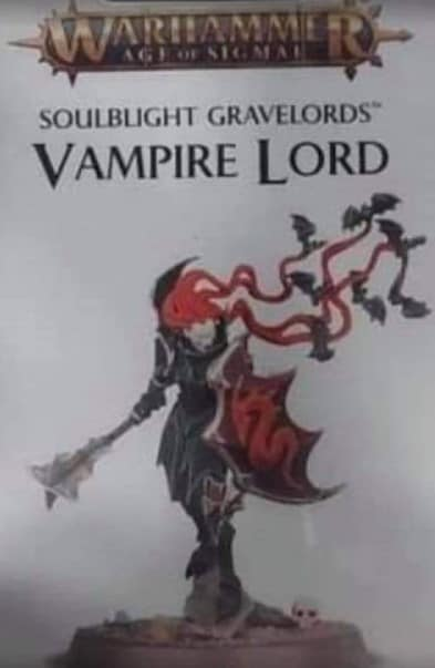 A blurry, poorly-lit image of the box art for a new Vampire model, with simple spiked black armour and long hair with bats flying out of it.